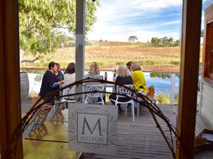 freycinet coles bay wine tours