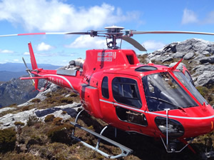 Ultimate Long Lunch  Helicopter Tour In Tasmania  Wine